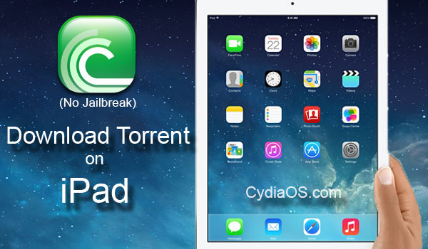 Download Torrent on iPad
