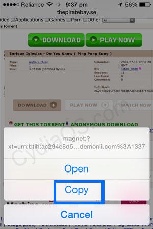 iPad torrents download