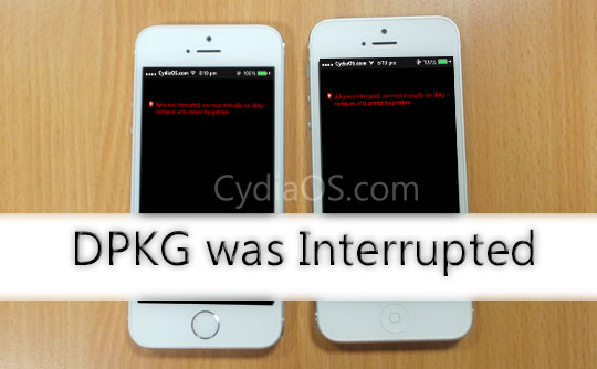 DPKG Was Interrupted Error