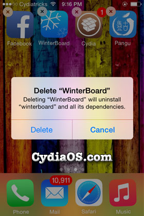 delete Winterboard directly